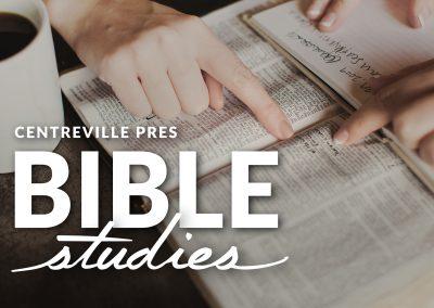Bible Studies begin throughout September