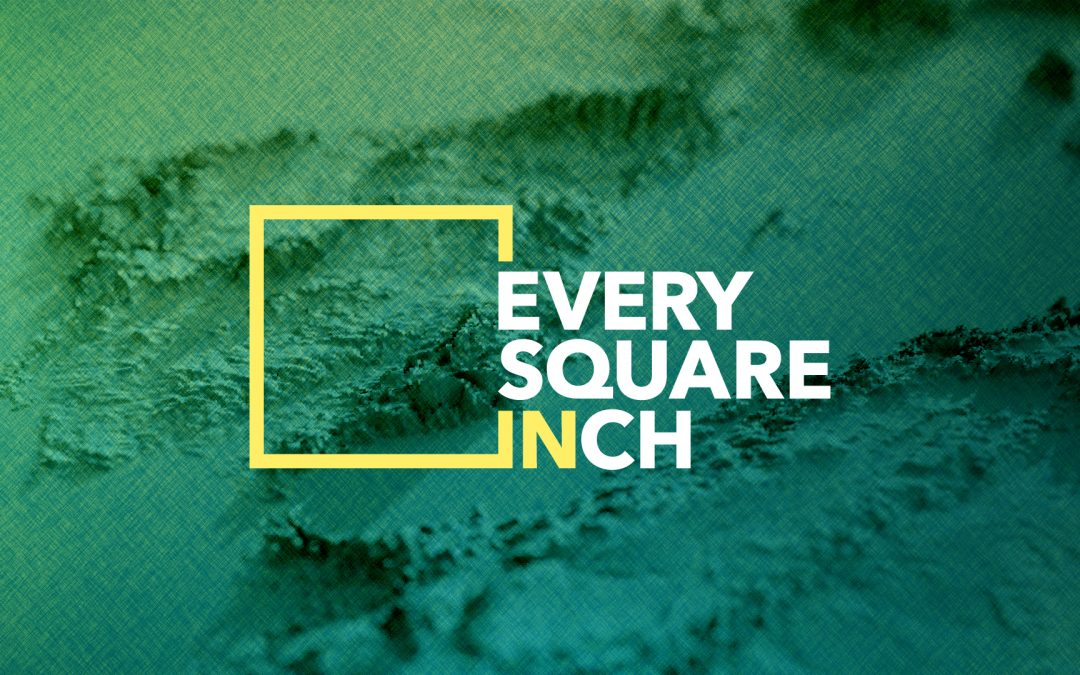 Every Square Inch: On the Street Where You Live